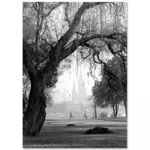 St Paul's Cathedral | Photographic Print by Zetta Florence