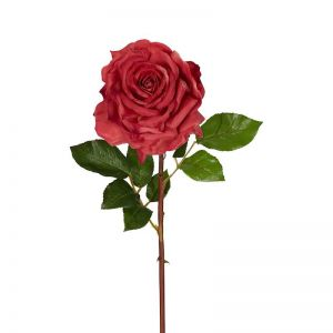 Stella Real Touch Rose Stem Rouge | 50cm | Rouge 6 x Stems
