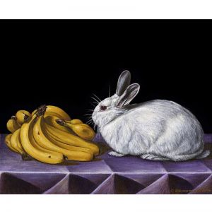 Still Life with Rabbit and Bananas | Giclee Art Unframed Print by Chris Beaumont