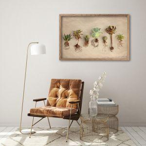 Succulent Study Group LS | Art Print by Natascha van Niekerk | Unframed