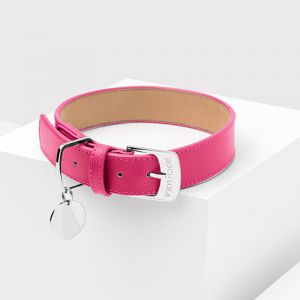 Sugar Leather Dog Collar