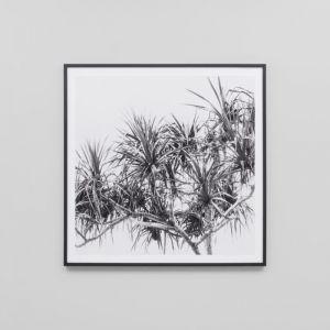 Summer Home   Framed Print