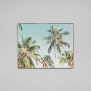 Summer Palms | Framed Photographic Canvas Print
