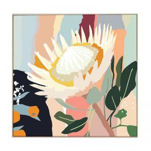 Sunlit Protea   Boxed Canvas Print