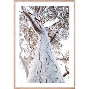 Sunset Gum | Framed Giclee Art Print | by Wall Style