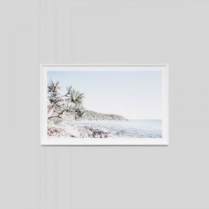 Tea Tree Bay | Framed Photographic Print