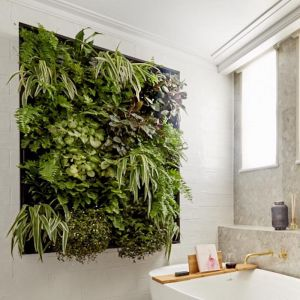 The Block Special | Vertical Garden