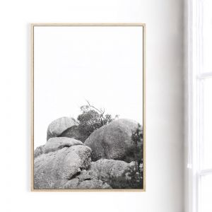 The Climb | Framed Canvas Print