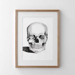 The Skull | Print