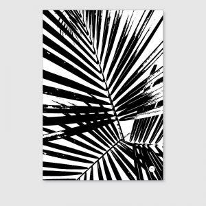 The Trio   Unframed Print