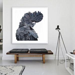 Theo The Black Cockatoo Square Premium Art Print (Various Sizes)