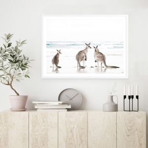Three Kangaroos Photo Art Print (Various Sizes)