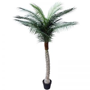 Tropical Phoenix Palm Tree | 170cm | UV Resistant