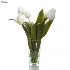 Tulips in Glass Vase   White