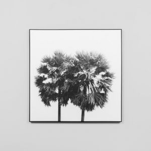 Twin Palms Grey | Framed Canvas Print