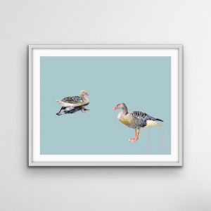 Two Geese | Watercolour Geese | Canvas or Art Print