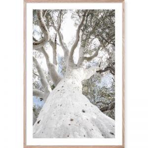 Under The Gum #1| Framed Giclee Art Print | by Wall Style