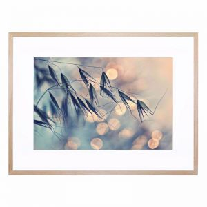 Untitled 6 | Framed Print by United Interiors & Alisa and Lysandra