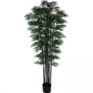 UV Stabilized Artificial Japanese Bamboo | 2.1m