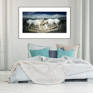 Valli | Horses in Landscape | Framed Photographic Print | by Artscope