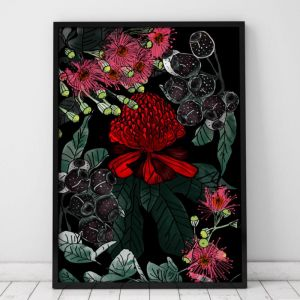 Waratah 2 | Limited Edition Art Print