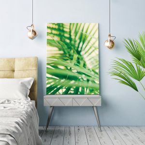 Warm Fern   Prints and Canvas by Photographers Lane