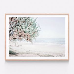 Wategos Beach | Framed Print | 41 Orchard