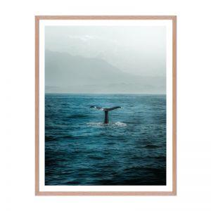 Whale Tail | Framed Print | Artefocus