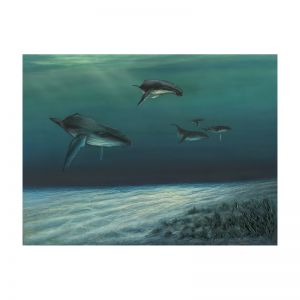 Whales | Canvas Print
