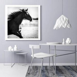 When I Wake Up | Photographic Art Print by Black Colt Photography
