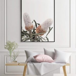 White Banksia 2 | Photographic Art Print by Donna Delaney