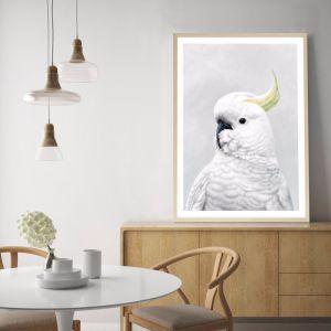 White Cockatoo Premium Art Print (Various Sizes)