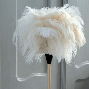 White Ostrich Feather Duster Long Handle