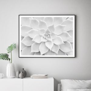 White Succulent | Unframed Art Print
