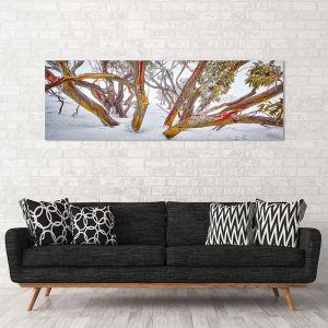 Wild | Canvas Print by Scott Leggo