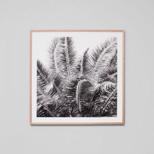 Wild Palms Grey | Framed Photographic Print