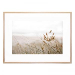 Windswept Framed Print by United Interiors