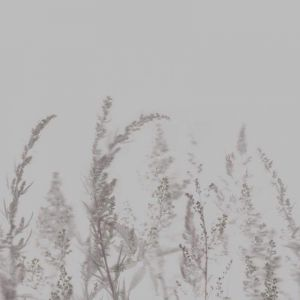Windy Meadow Mural Wallpaper - Grey