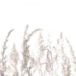 Windy Meadow Mural Wallpaper - White