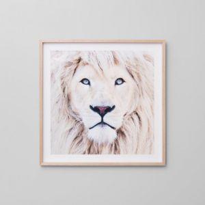 Winter Lion Blonde | Framed Print