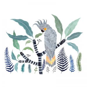 Yellow Tailed Grey Cockatoo, Frangipani and Ferns by Sally Browne | Art Print