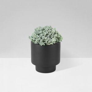 Zakkia Black Podium Planter Medium | by Aura Home