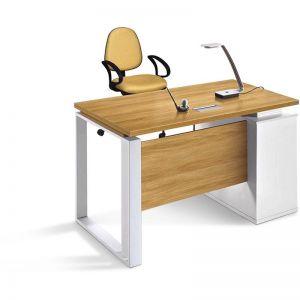 Zane Executive Office Desk | Modern Furniture