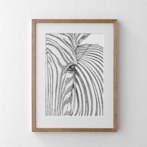 Zane the Zebra | Print