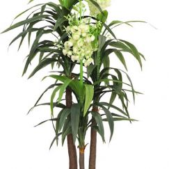 Artificial Sisal Plant Multiple Heads | 185cm