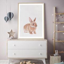 Baby Rabbit I Art Print   Various Sizes