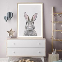 Baby Rabbit III Art Print   Various Sizes