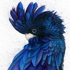 Black & Blue by Shani White (Ltd. Edition Print)