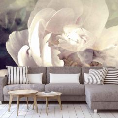 Blooming Peonies Wallpaper