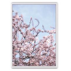 Blossom Framed Canvas Print